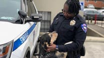 Mississippi police department using shelter to build relationships, get dogs adopted
