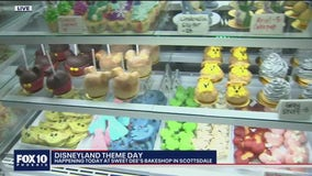 Disneyland Theme Day at Sweet Dee's Bake Shop