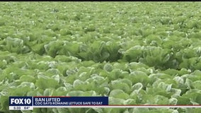FDA: Romaine lettuce E. coli outbreaks over