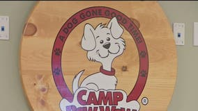 Camp Bow Wow doggy daycare and overnight stay facility opens in Scottsdale