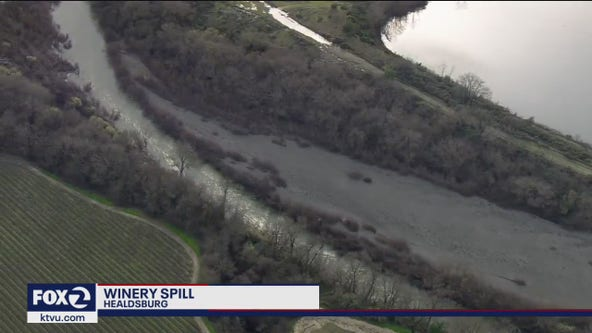 A tank holding more than 90,000 gallons of red wine leaks into North Bay creek