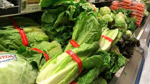 Romaine lettuce E. coli outbreaks over, product safe to eat again, FDA says