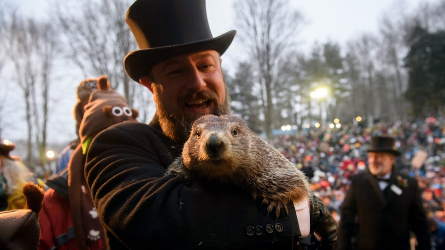 PETA calls for Punxsutawney Phil to retire, be replaced with AI robot for Groundhog Day
