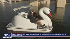Cory's Corner: Dragon pedal boats, duck-shaped boats at Tempe Town Lake