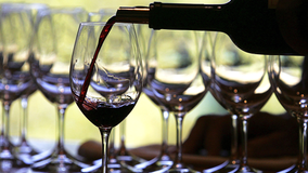 Wine prices slated to dwindle over excess grape supply, experts say