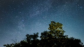 Habitat loss, light pollution and other threats are putting fireflies closer to mass extinction