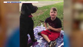 Dog trainer: Lori Vallow gave up JJ's service dog just before Idaho move