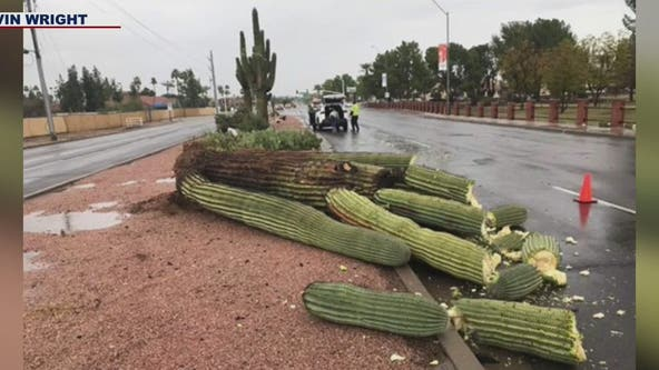 Storms drop record-breaking rainfall in Phoenix, canceling or delaying scheduled events