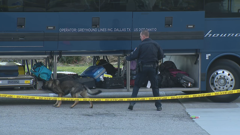 An officer and his dog sniff around a Greyhound bus that was headed to the Bay Area. Feb. 3, 2020