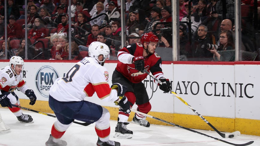 Bobrovsky stops 36 shots in Panthers' 2-1 win over Coyotes
