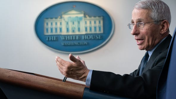 Fauci predicts 'millions' of US coronavirus cases, 100K-200K deaths