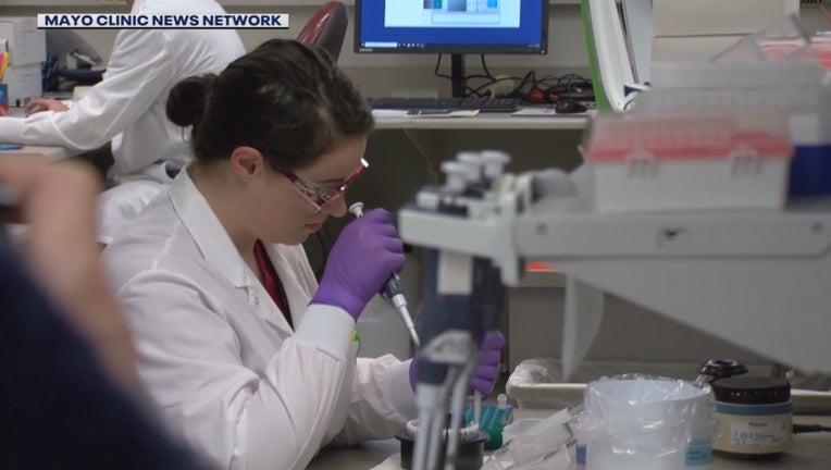 antibody research Mayo Clinic