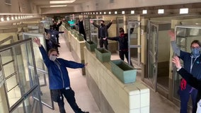 Empty animal kennels at animal shelter a welcome sight amid COVID-19 pandemic