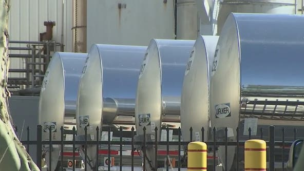 Arizona dairy farmers struggle to sell enough milk, dumping over 100K gallons a day