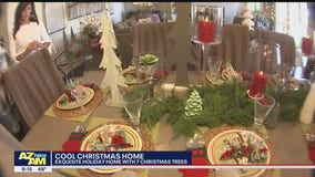Cool House: Holiday home in Gilbert with 7 Christmas trees