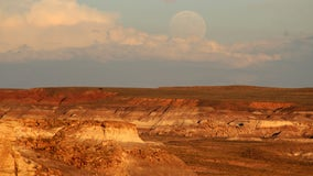 Petrified Forest National Park to begin phased reopening