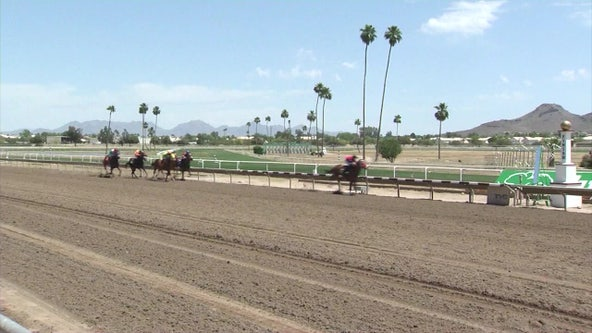 Turf Paradise cancels horse racing schedule due to COVID-19 pandemic