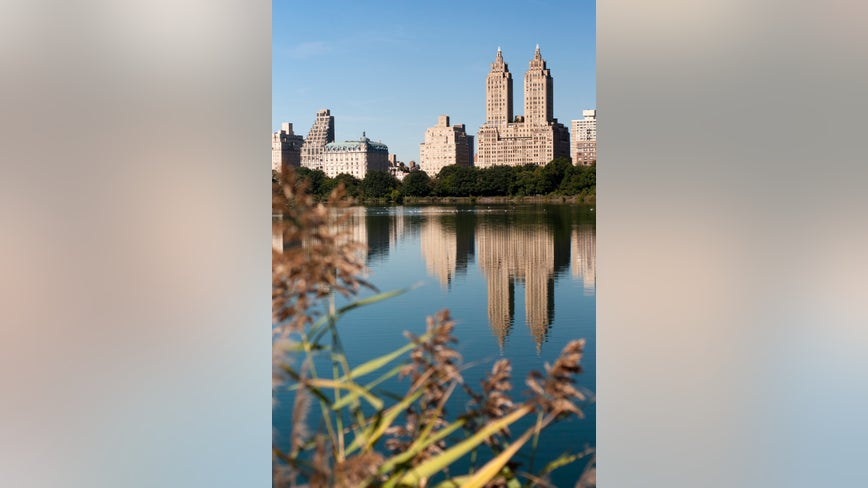 Woman who called cops on black man in Central Park fired from job