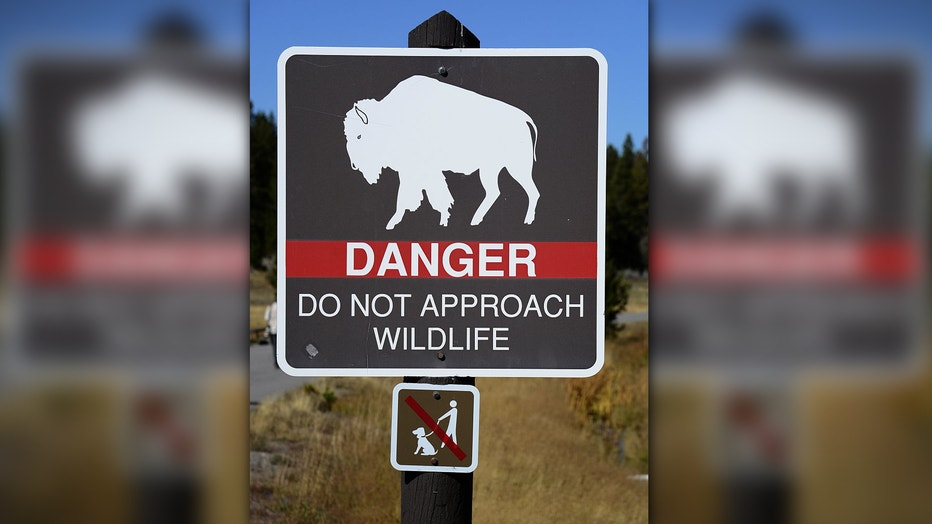Bison sign at Yellowstone