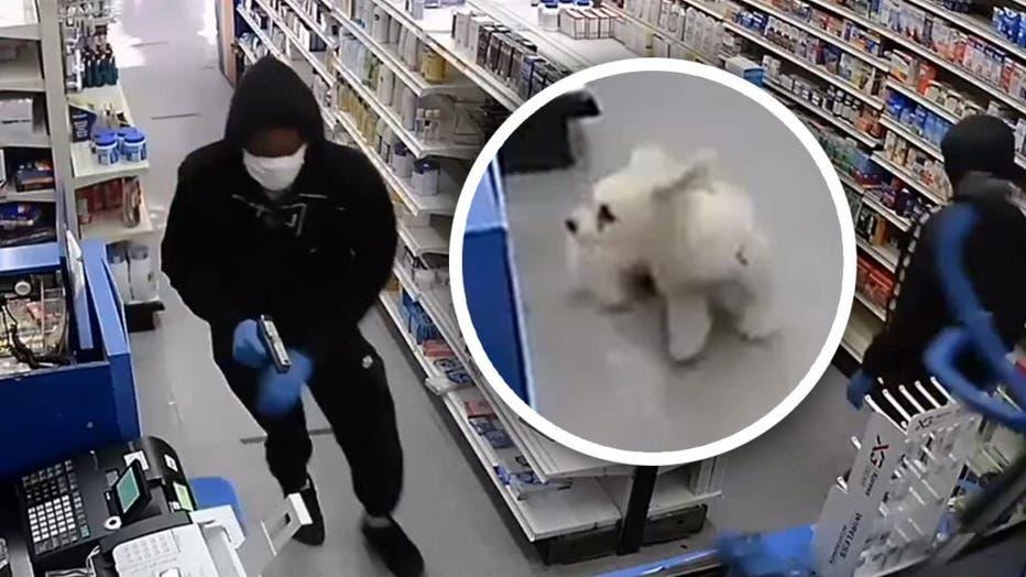 Dog-robbery.jpg