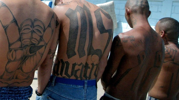 'Disrupt and destroy MS-13': DOJ announces first-ever terrorism charges in nationwide gang crackdown