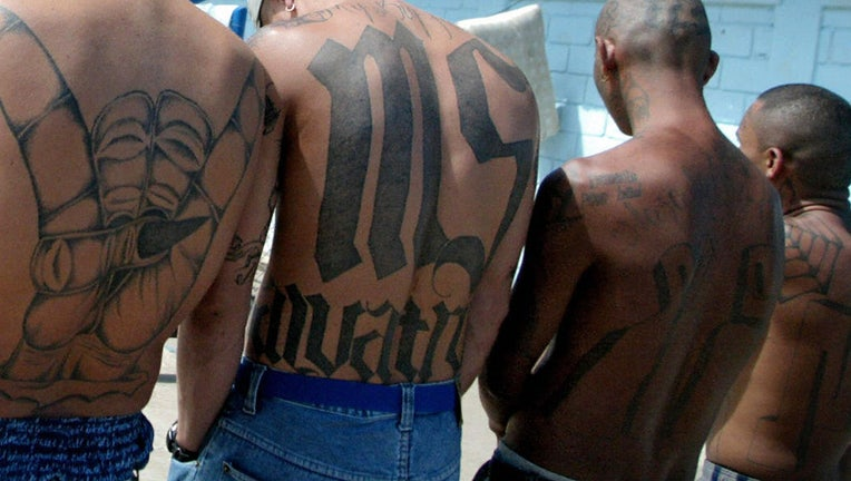 Task Force Drops Gang Database After Complaints It Has Too Many Minorities In It