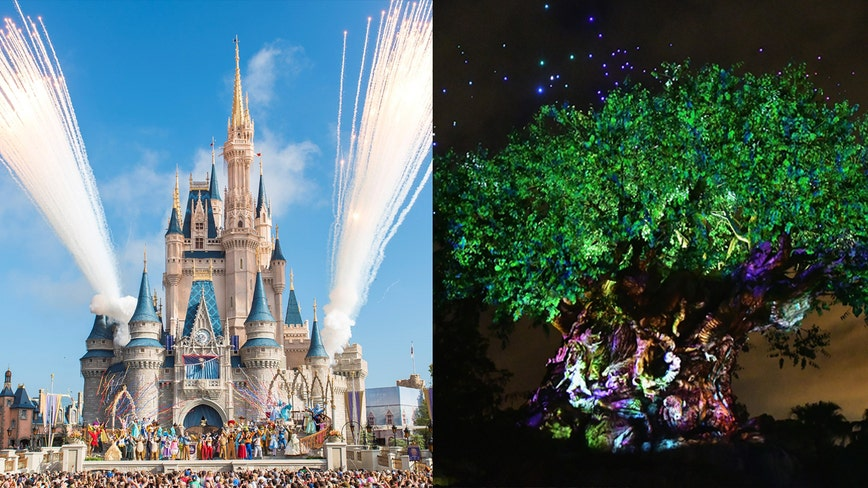 Disney World reopens Saturday: Safety measures, attractions, and everything you need to know before you go