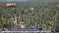 Drier monsoon season prompt resumption of fire restrictions at 2 national forests