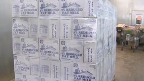 Food banks receiving extra milk donations from Arizona dairy farms during pandemic