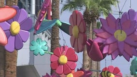 New art installations in two Valley shopping centers creating some 'buzz'
