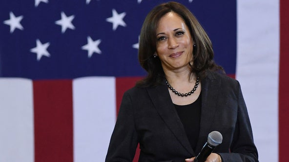 Kamala Harris' political star rose from Bay Area background