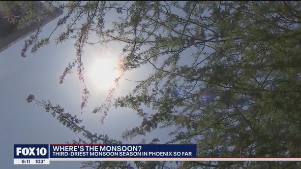 Where is the Monsoon? Arizona sees 3rd driest monsoon season so far