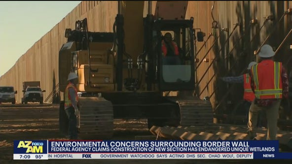 Environmental concerns surrounding new section of border wall in Arizona