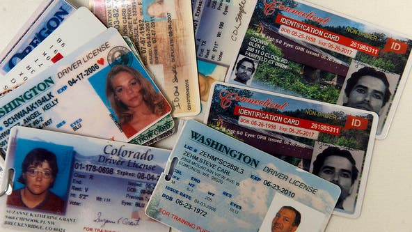 Fake driver's licenses flooding into US from China, other countries, US says