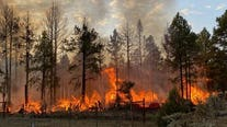 Evacuation orders lifted in Doney Park as wildfire burns near Flagstaff; person of interest sought and found