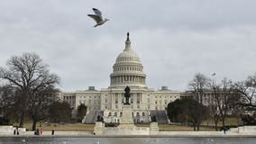 Another COVID-19 relief bill looks increasingly unlikely as Congress returns