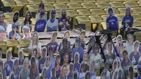 Dodgers: No World Series celebrations in Los Angeles 'until it is safe' amid pandemic