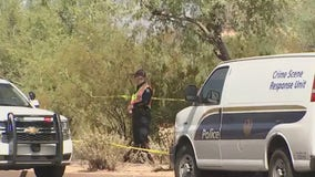Police: Man found dead in north Phoenix, homicide suspected