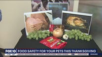 Food safety for your pets this Thanksgiving