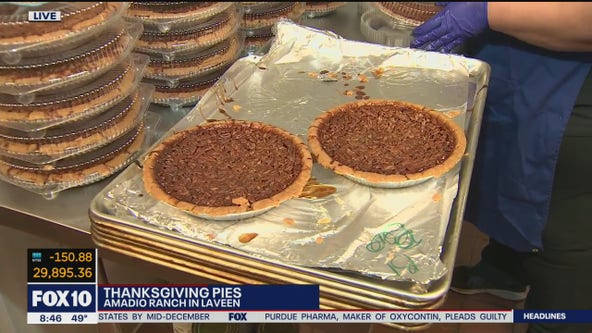 Thanksgiving pies at Amadio Ranch in Laveen