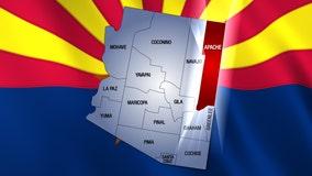4 wild horses fatally shot in Arizona; $5,000 reward offered for information