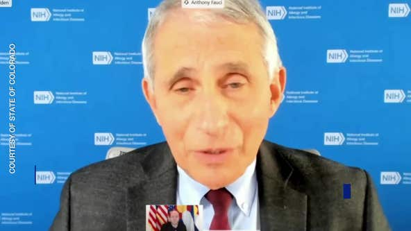 Fauci: U.S. on precipice of coronavirus 'surge upon surge'