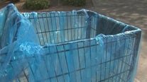 Woman creates reusable grocery cart covers to keep food, items sanitary