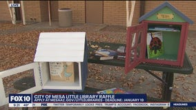 City of Mesa holds Little Libraries raffle