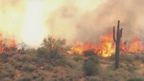 Arizona's 2020 wildfire season among worst in past decade