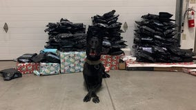 YCSO K-9s help seize over 130 pounds of marijuana, including some wrapped as Christmas gifts