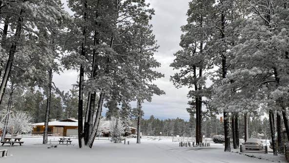 Winter storm warning issued for parts of north-central Arizona