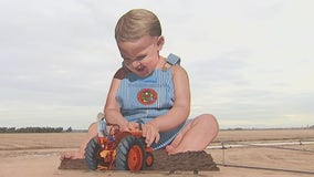 Giant baby billboard returns to Goodyear