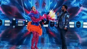 Jordin Sparks revealed as the Exotic Bird on the 'Masked Dancer'
