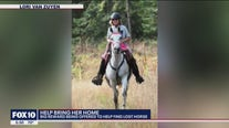 Big reward offered for horse lost in Wickenburg